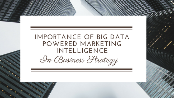 Importance Of Big Data Powered Marketing Intelligence In Business Strategy