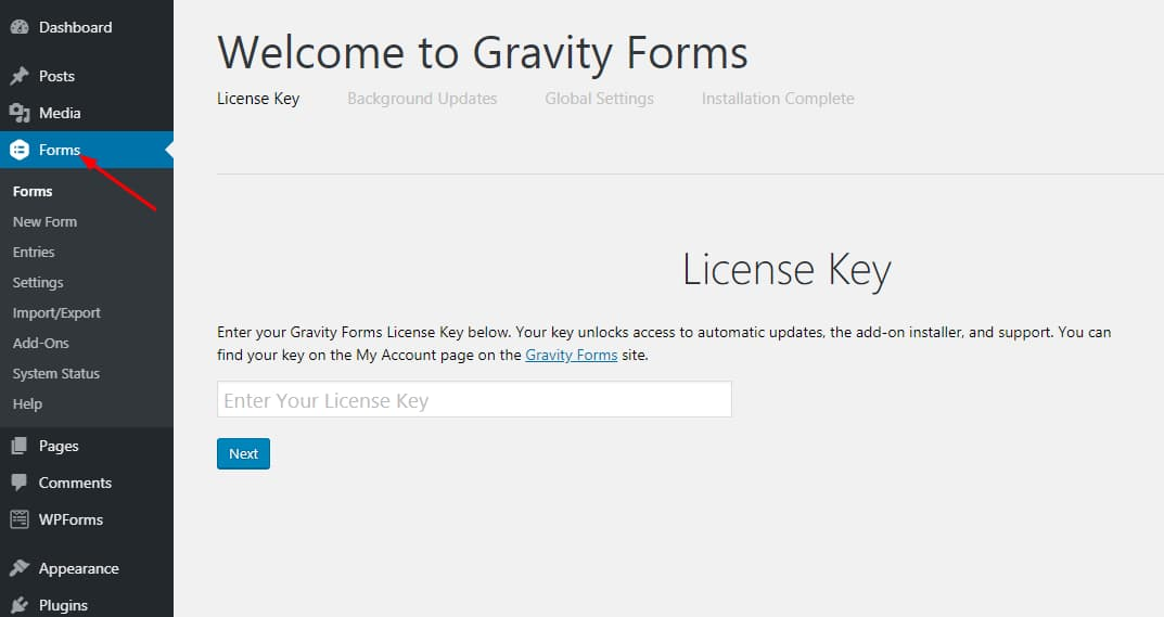 enter gravity forms license key