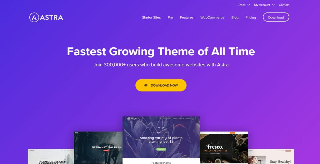 wp astra - the best and lightweight wordpress business theme