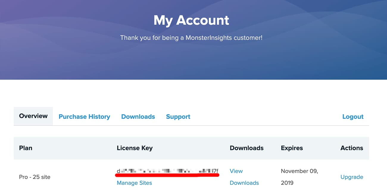 copy monsterinsights license key