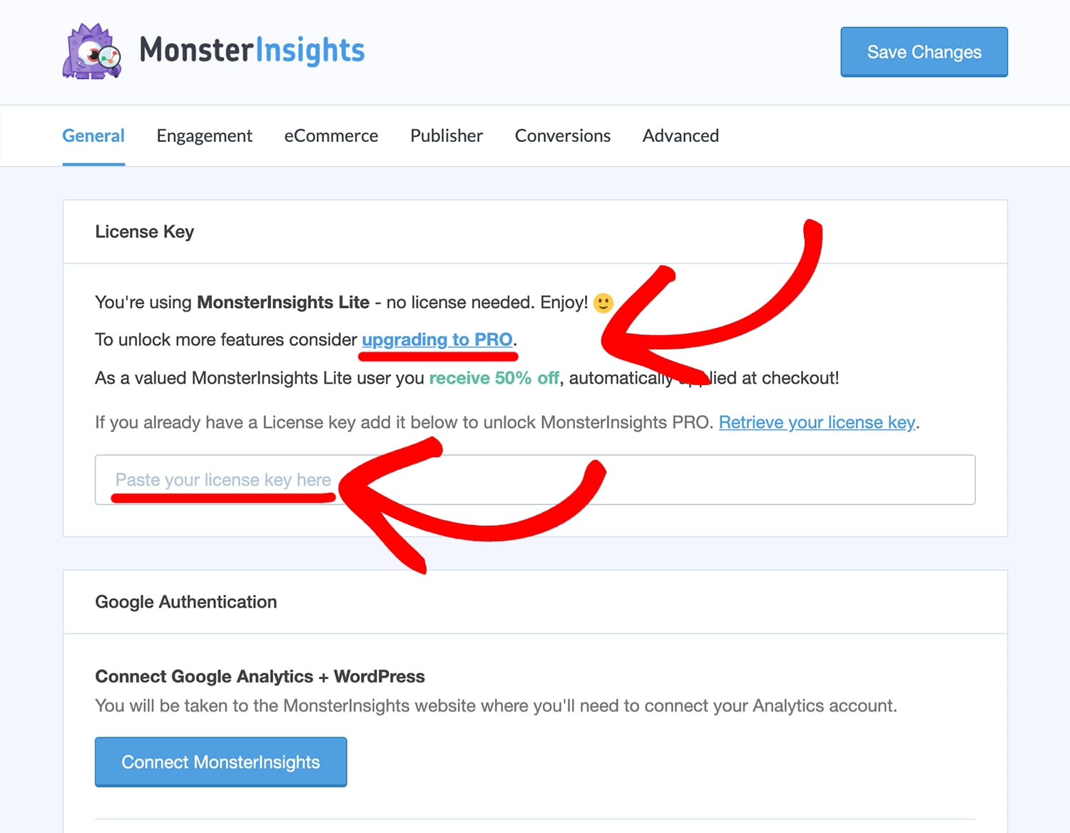 paste monsterinsights license key